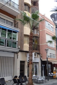 AMPLIO Piso en Pleno centro de Torrevieja ·