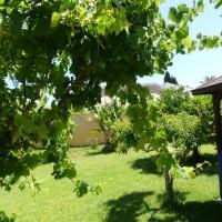 villa avec piscine privée à Los Balcones Torrevieja